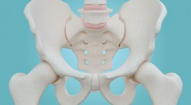 Overactive Bladder and the Role of the Pelvic Floor Muscles