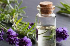 Four Natural Remedies to Help Improve OAB Symptoms